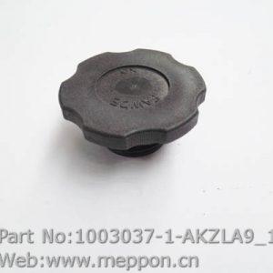 1003037-1-AKZLA9