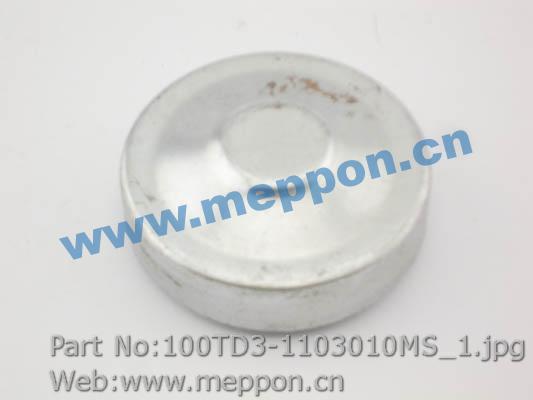 100TD3-1103010MS