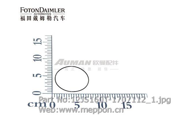 12JS160T-1707112