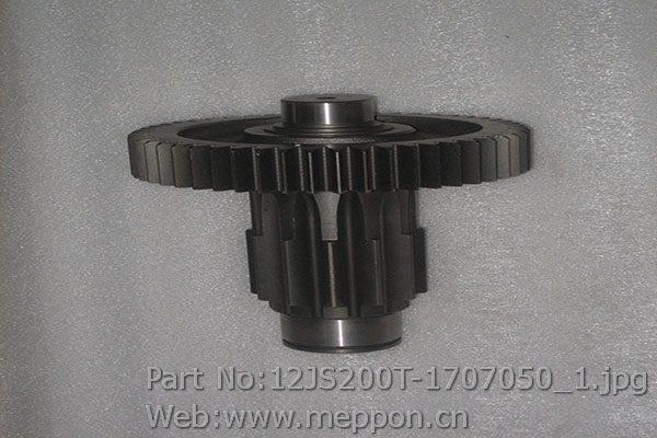 12JS200T-1707050