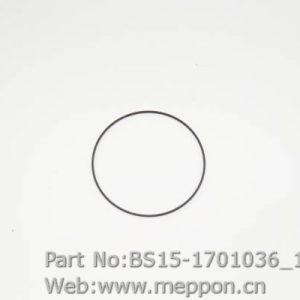 BS15-1701036