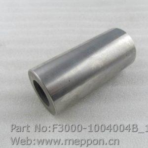 F3000-1004004B