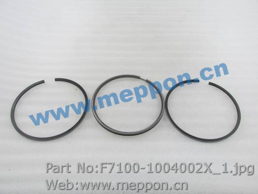 F7100-1004002X