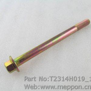 T2314H019