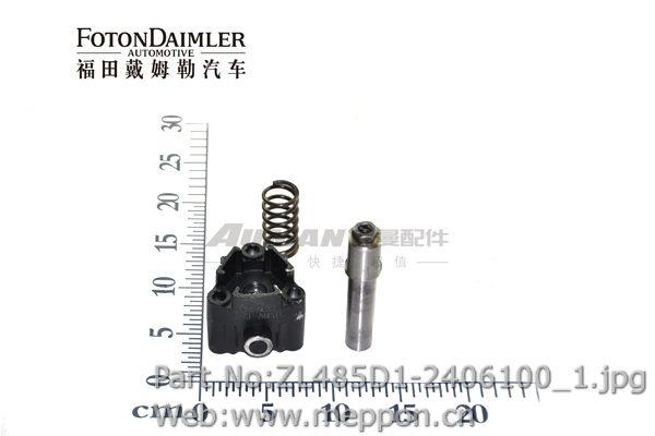 ZL485D1-2406100