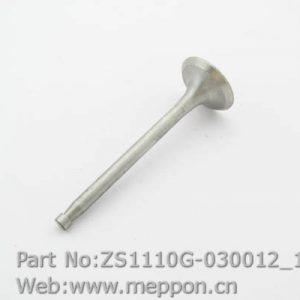 ZS1110G-030012