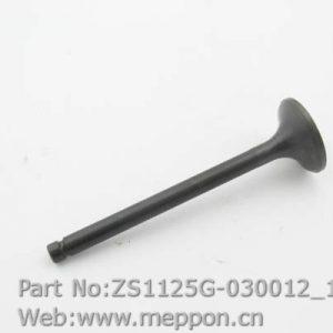 ZS1125G-030012